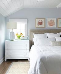 Cottage Bedroom with Shiplap Ceiling - Cottage - Bedroom