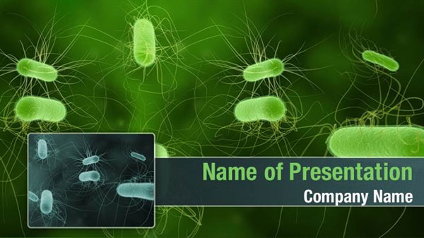 Green Animal Print Wallpaper Bacterial Infection Powerpoint Templates Bacterial