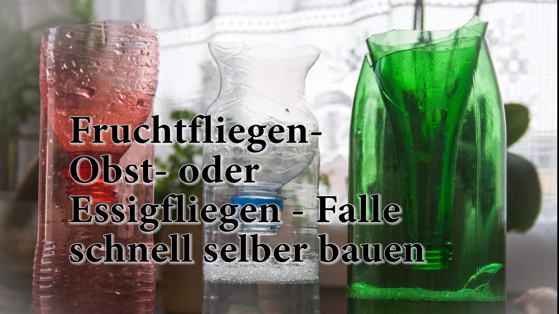 Pet Flaschen Basteln Laterne Basteln Kleinkind Vorlagen Hübscher