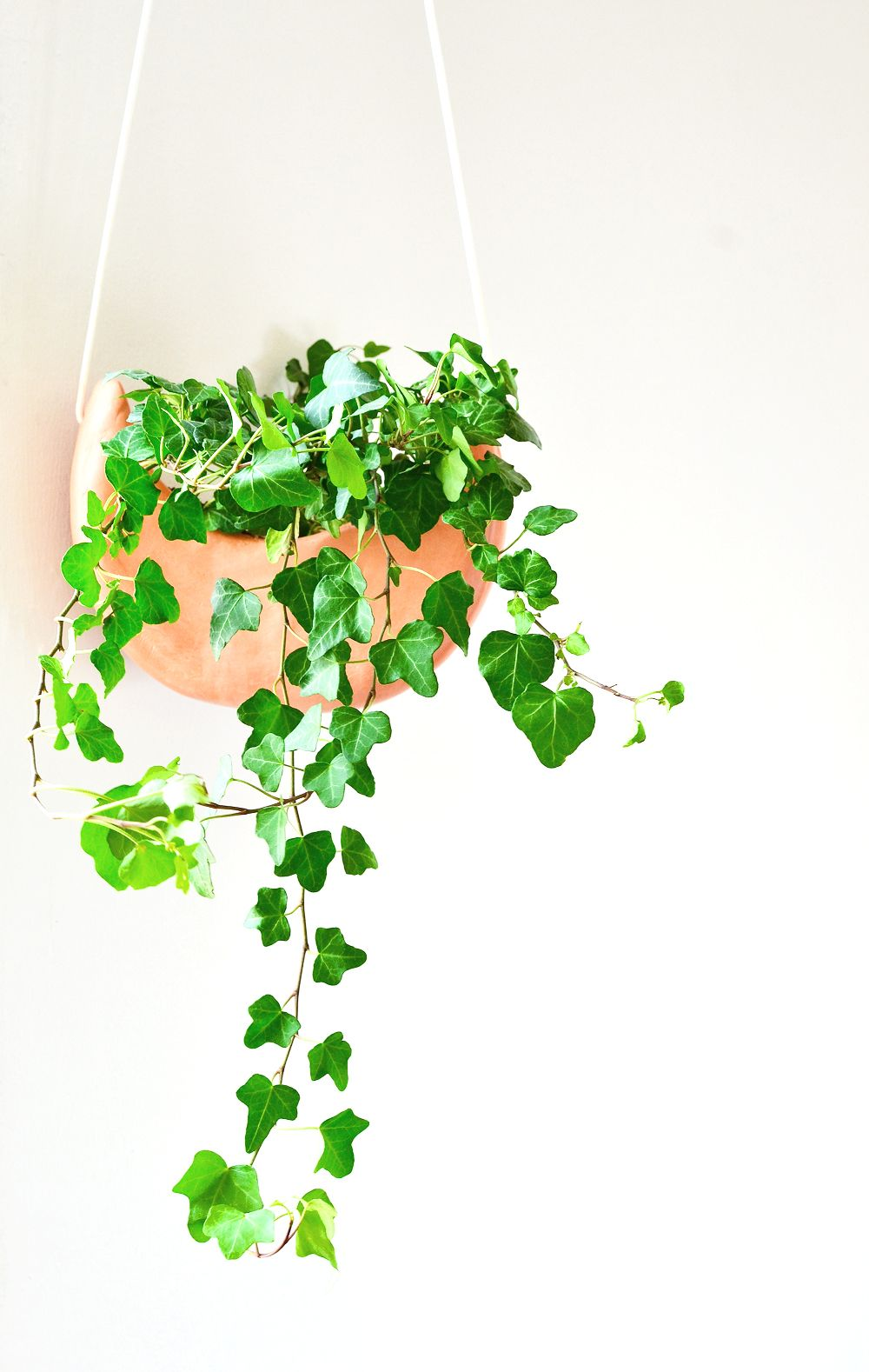 Ikea Plantation Diy Crescent Moon Hanging Planter