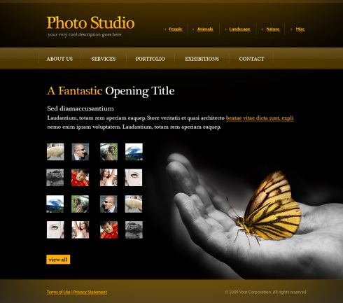 Photo Gallery Web Template - 6072 - Art  Photography - Website