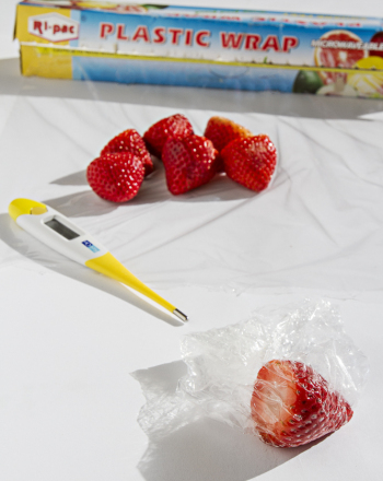 Thermotherapy and Strawberries Science project Education