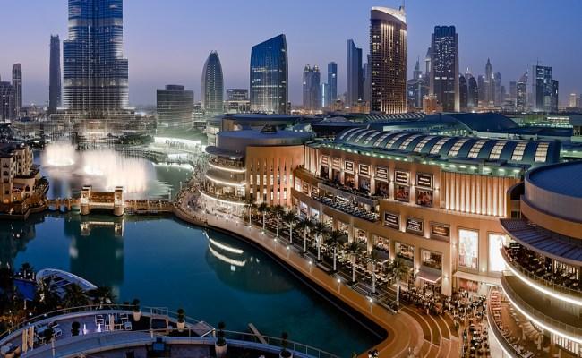 The Dubai Mall Directoryengine Enginethemes