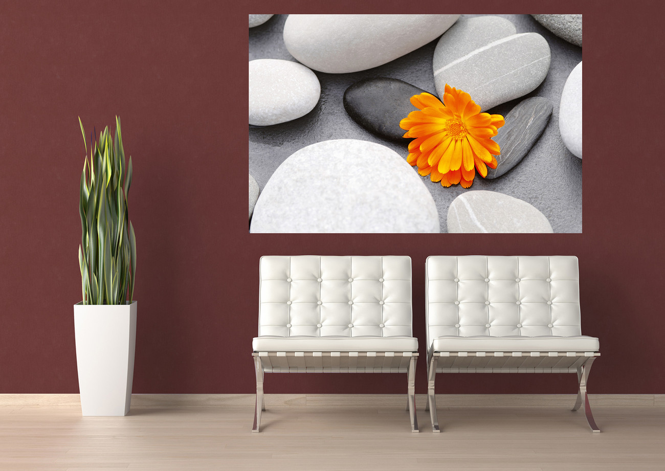 Achim Sass Heart Among Stones Wall Mural Buy At Ukposters