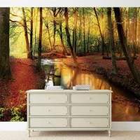 Forest River Beam Light Nature Wall Paper Mural   Buy at ...