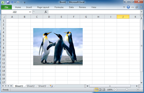 How to insert and delete images or background images in Excel