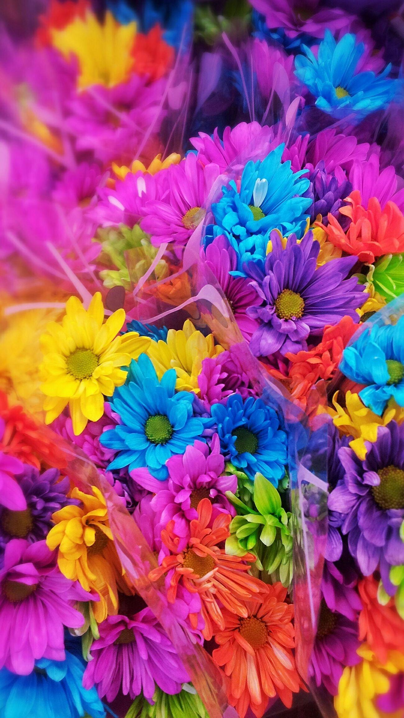 Wallpaper Images Hd Flowers Karla J Eyeem