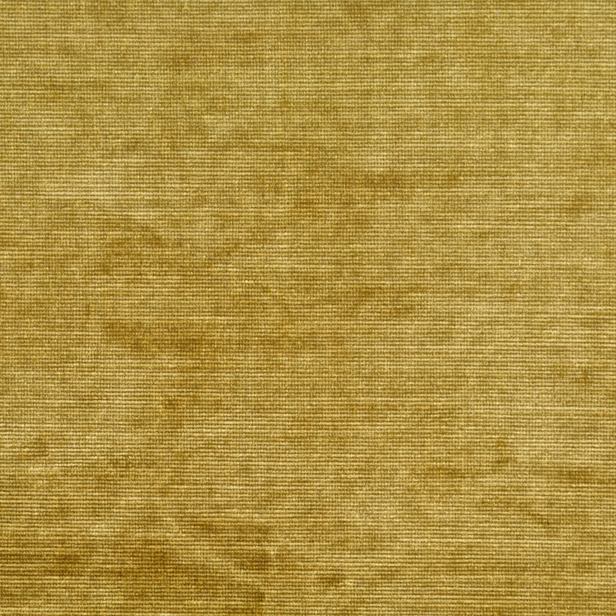 Aida Velvet Antique Gold Fabric Clarence House