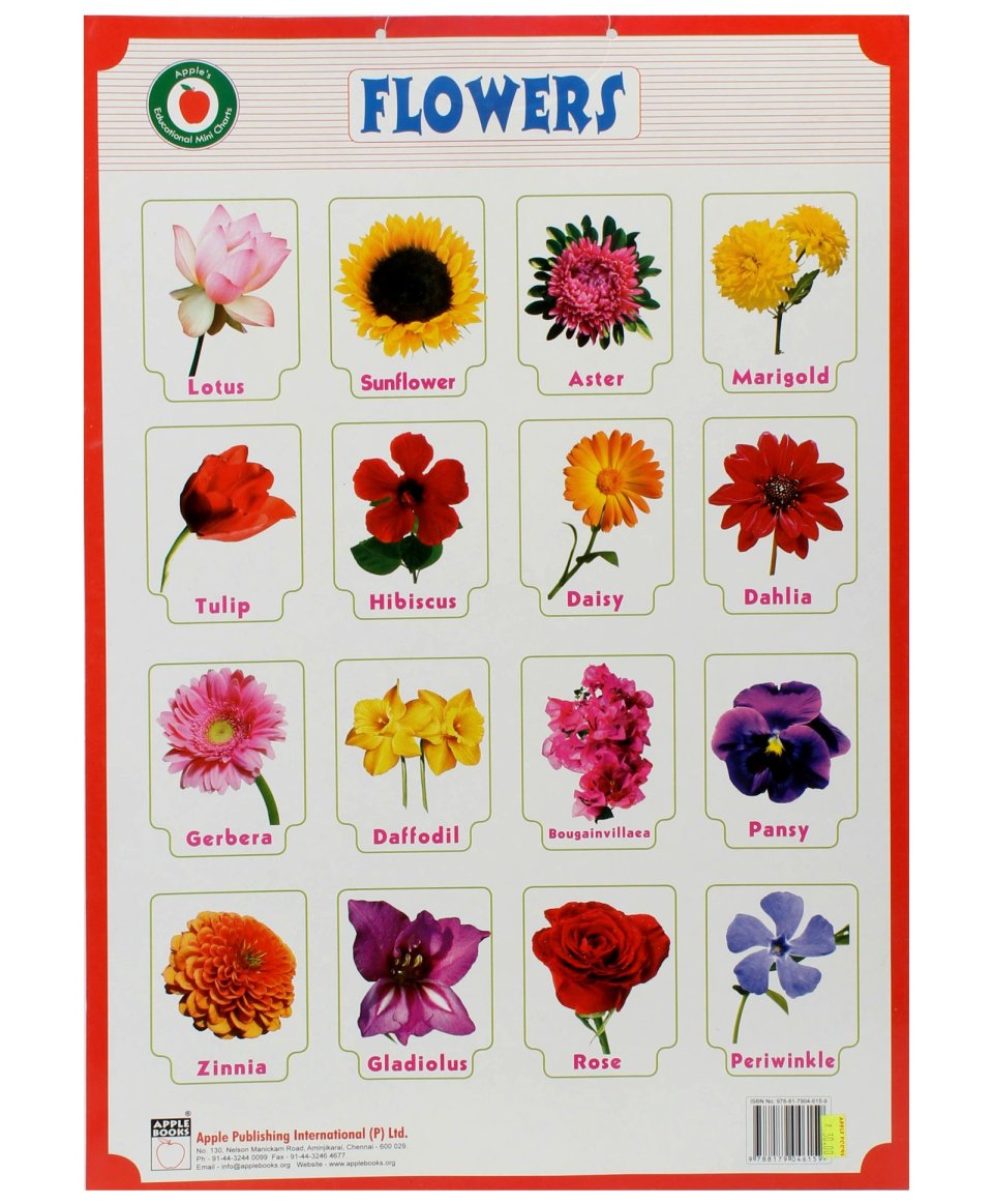 Flowers image with name floweryred2 pictures names of flowers savingourboys info izmirmasajfo