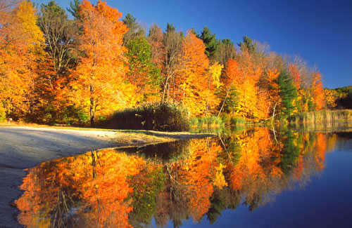 Wallpaper Images Of Fall Trees Lined Lake The 6 Best Fall Foliage Drives In New England Fodors