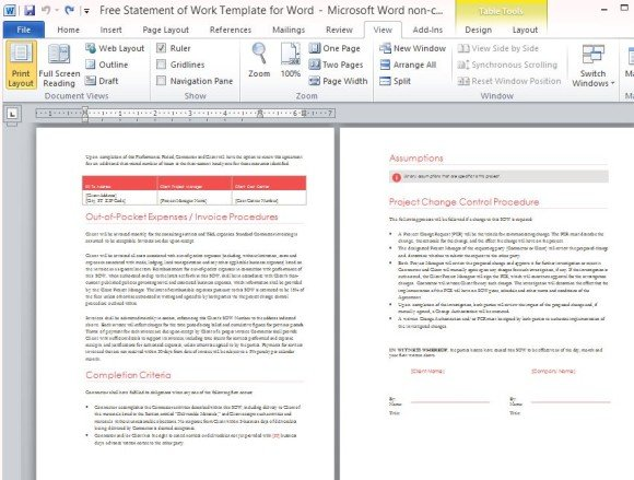 Free Statement Of Work Template For Word - professional document templates