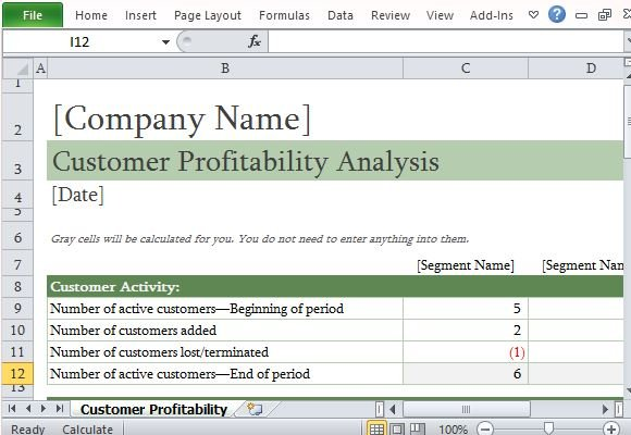 How To Easily Perform A Customer Profitability Analysis in Excel - data analysis template