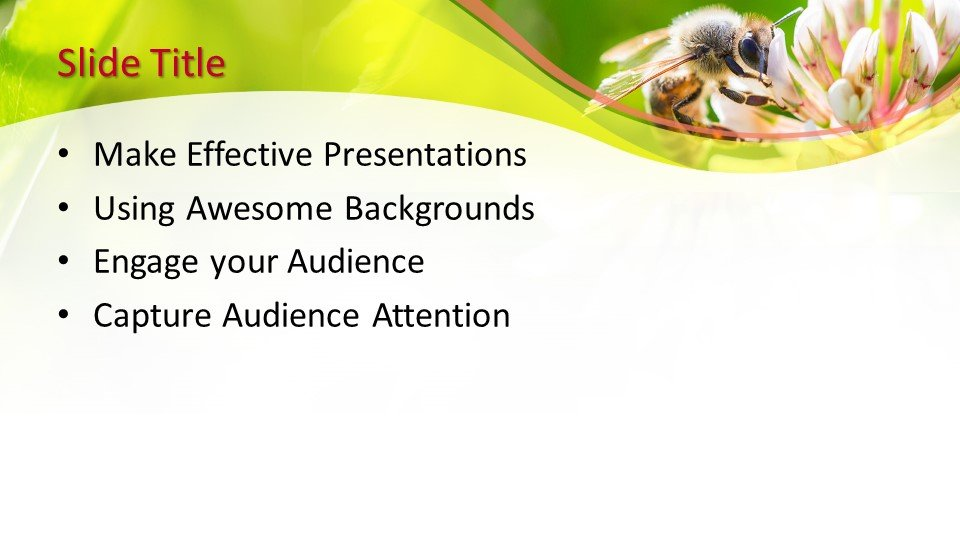 √ Free Bee PowerPoint Template