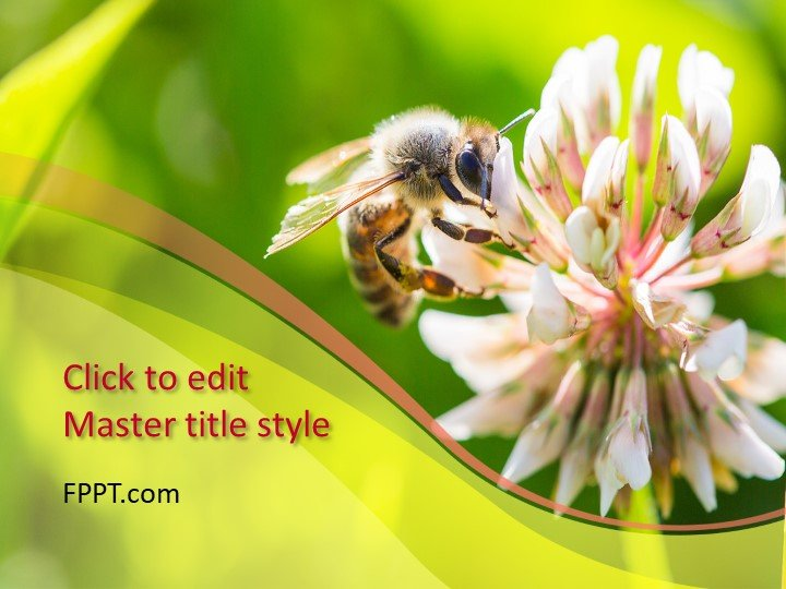 Free Bee PowerPoint Template - Free PowerPoint Templates