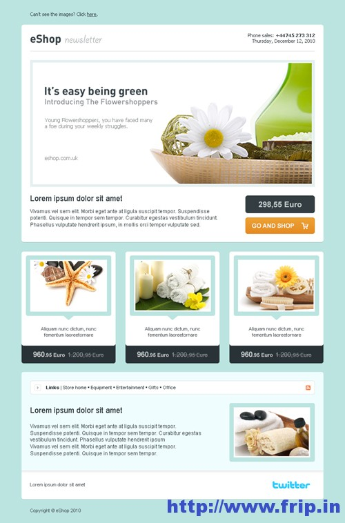 Best 40 Shopping eCommerce Email Templates Fripin