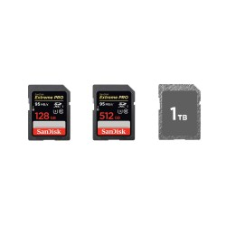 Small Crop Of 1 Tb Sd Card