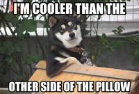 I'M COOLER THAN THE OTHER SIDE OF THE PILLOW   Meme ...