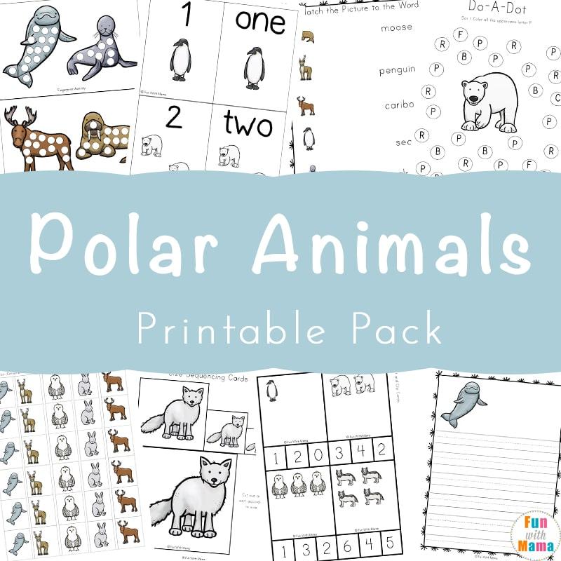 Polar Animals Activities