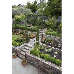 Small Crop Of Garden Ideas For Backyard