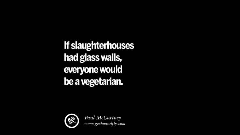 Money Making Quotes Wallpapers 20 Quotes On Vegetarianism Being A Vegetarian And Killing