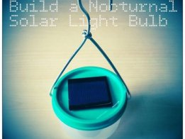 NOCTURNAL SOLAR LIGHT BULB