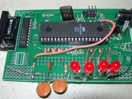 Real-time, real-voltage neuron on 8-bit MCU