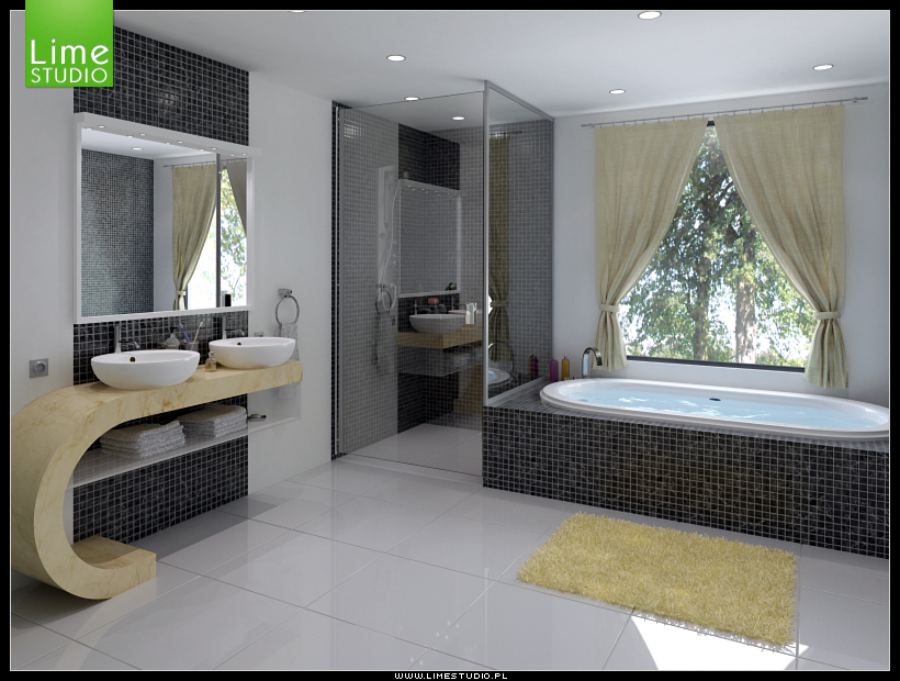 Bathroom Design Ideas - bathroom designs ideas