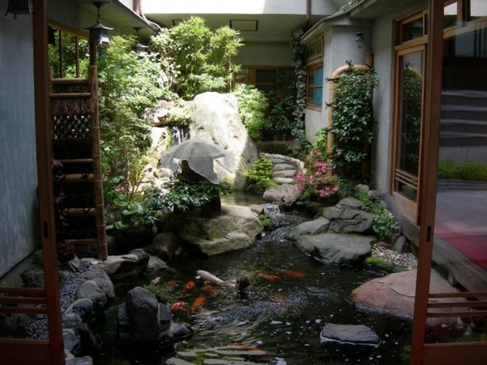 homes indoor ponds photo credits eduardo calderon alan abramowitz tom hille