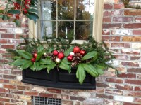 Flower Box Christmas Decoration - Halloween F