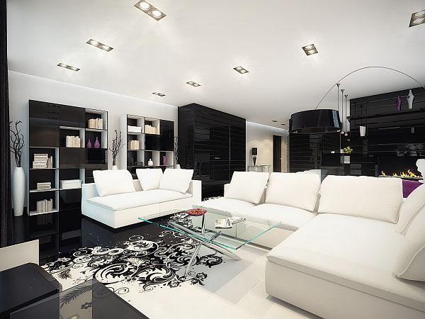 Splash of Color in a Black \ White Environment - black and white living rooms