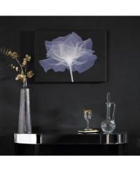 X-Ray Rose Wall Art