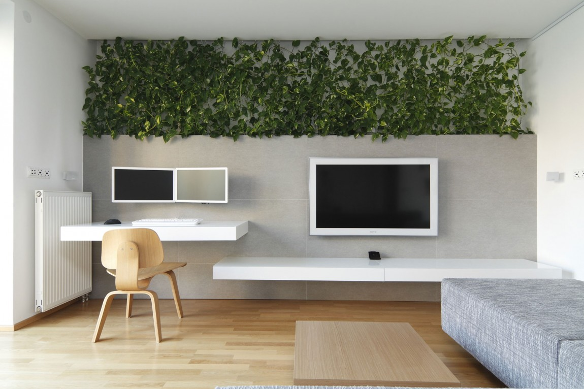 Wohnwand Schlicht Snazzy Apartment Showcases A Lavish Green Wall
