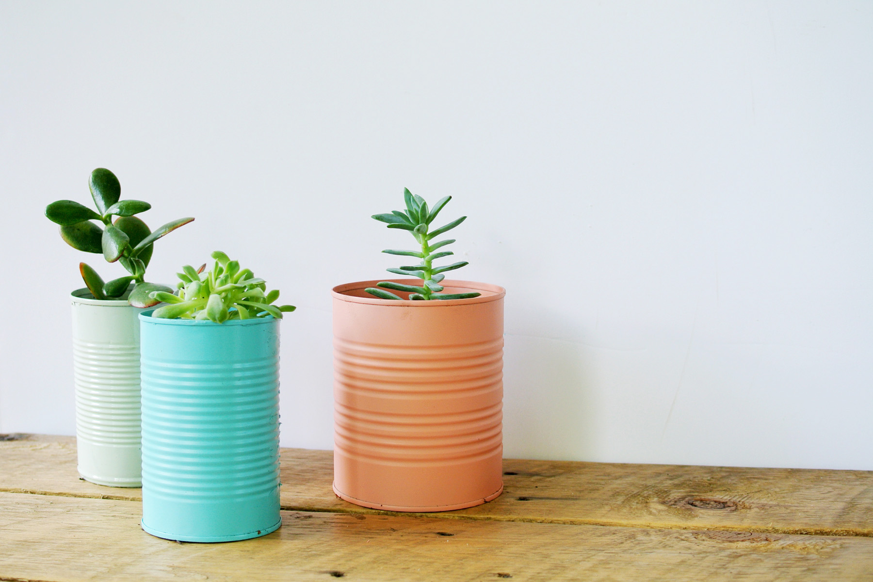 Simple Planters Easy Diy Tin Can Planters