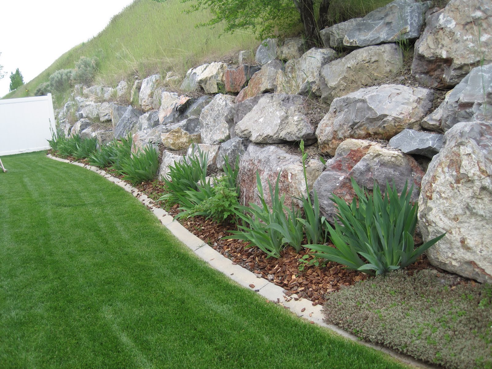 Back Garden Ideas 20 Rock Garden Ideas That Will Put Your Backyard On The Map
