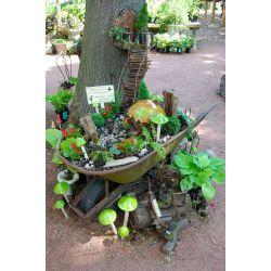 Small Crop Of Natural Fairy Garden