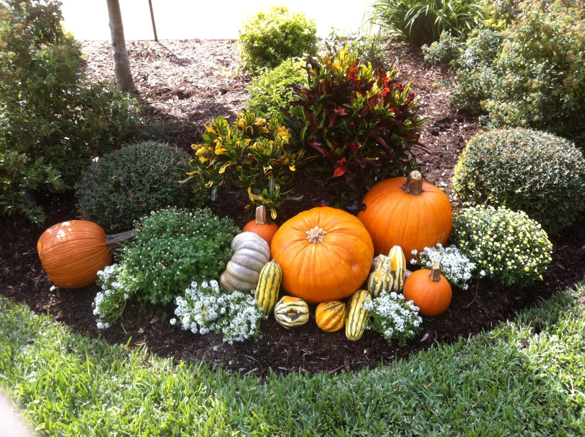 Landhaus Stuhl 20 Ways To Help Create A Fall-inspired Front Lawn