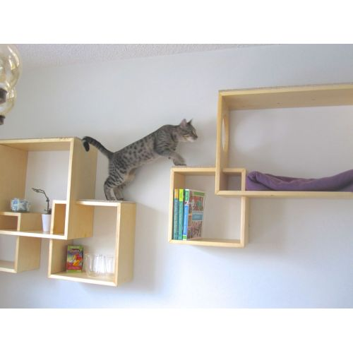 Medium Crop Of Modern Wall Mounted Bookshelves