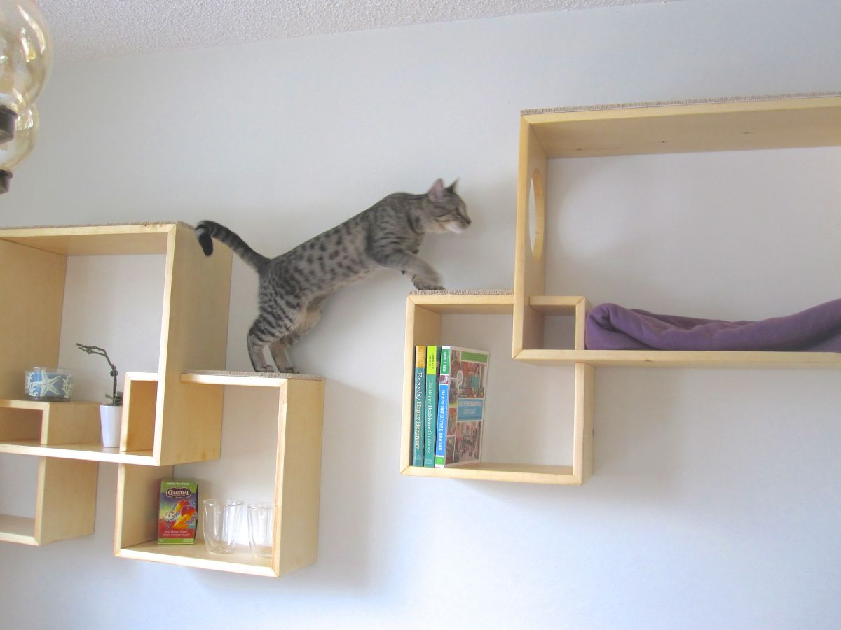 Cat Furniture Wall Modern Cat Tree Alternatives For Up To Date Pets