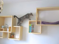Small Of Modern Wall Mounted Bookshelves