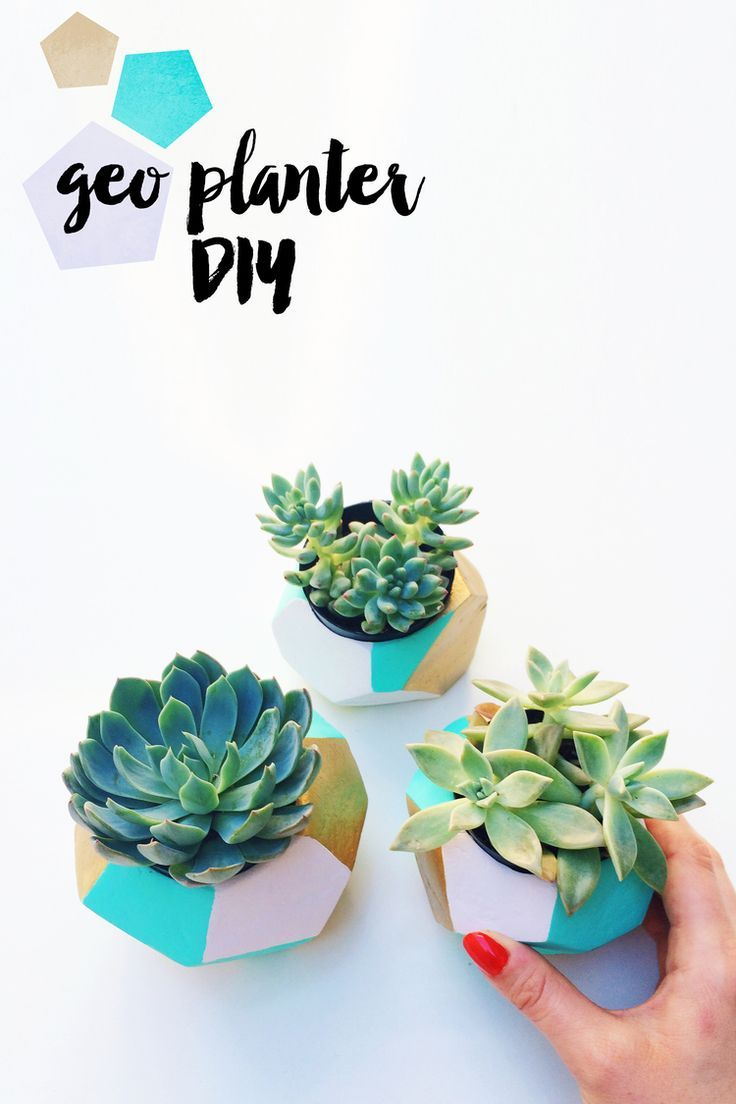 Cubicle Wall Planter 20 Cubicle Decor Ideas To Make Your Office Style Work As Hard As