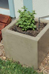 Diy Concrete Planters Large - Do It Your Self (DIY)