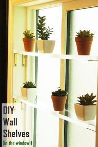 DIY Wall Shelves: Gorgeous Acrylic Shelves on Walls or in ...
