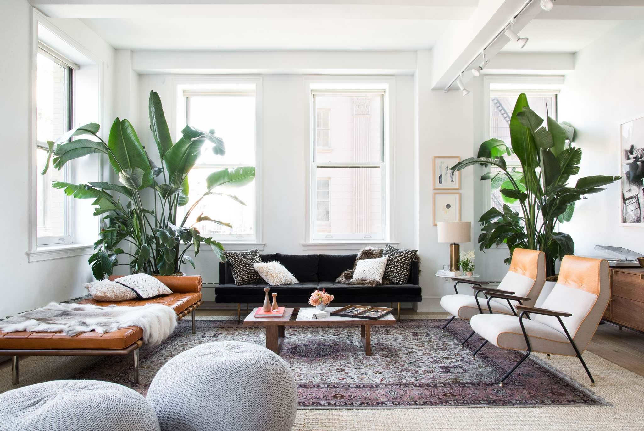 Plants For Living Room 15 Living Rooms To Help You Master Scandinavian Design