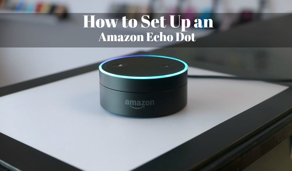 Small Office Ideas How To Set Up An Amazon Echo Dot