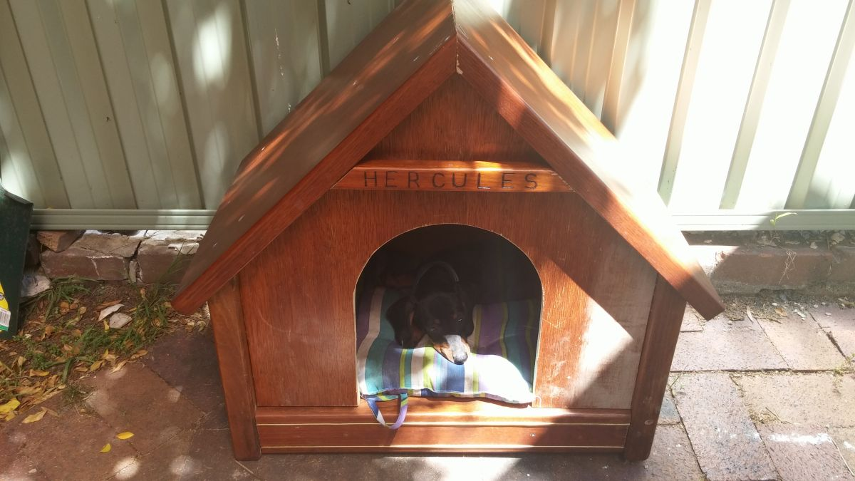 Diy Dog House Plans And Ideas Your Best Friend Will Absolutely Love