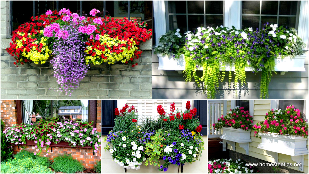 19 Simply Breathtaking Flower Box Ideas to Accessorize