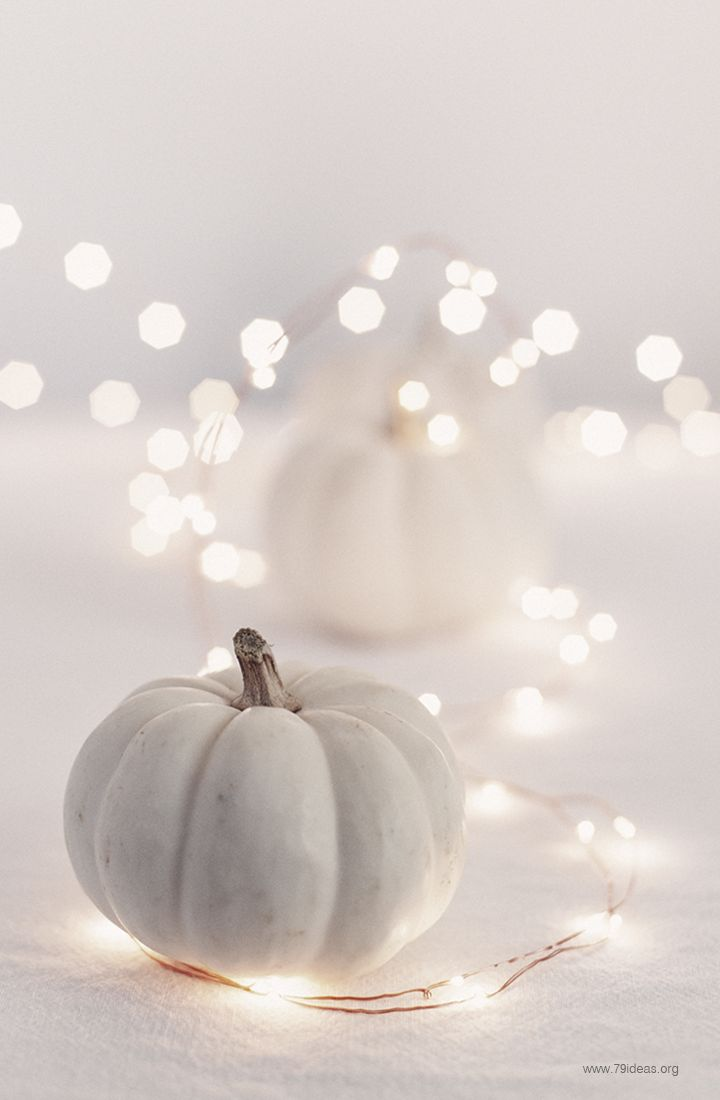 Pumpkin Fall Wallpaper 21 Charming White Pumpkin Fall Decorations For Your Household