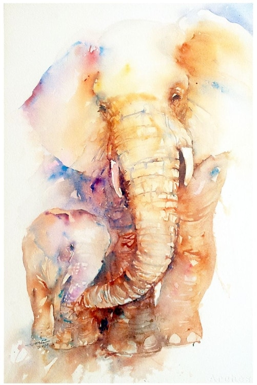 Elefante Pintura Learn The Basic Watercolor Painting Techniques For