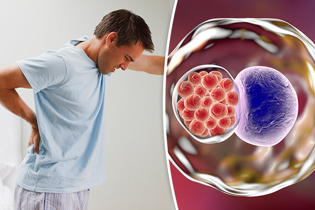 Symptoms of Chlamydia in males Six warning signs of the STI you - cure for chlamydia