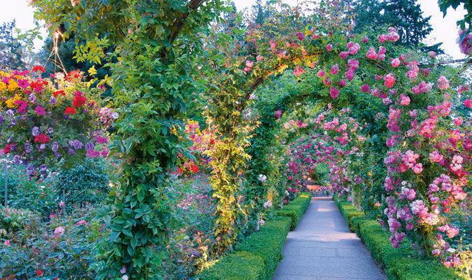 grand designs alan titchmarsh on creating a bigger garden
